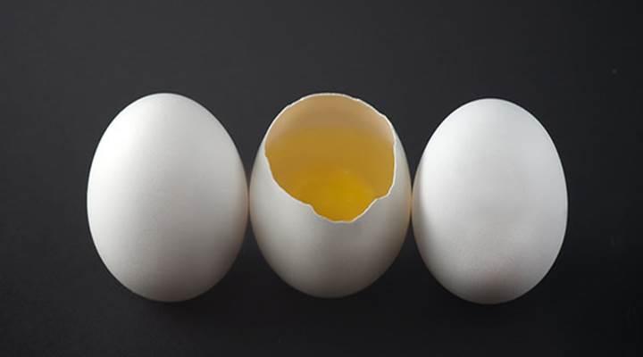 Quantas proteinas tem um ovo
